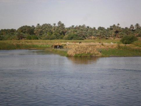 Farming on an island in the Nile
