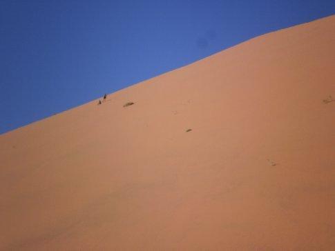 Cool dune