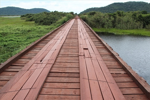 Wooden road bridge on the way into the Pantanal, Brazil