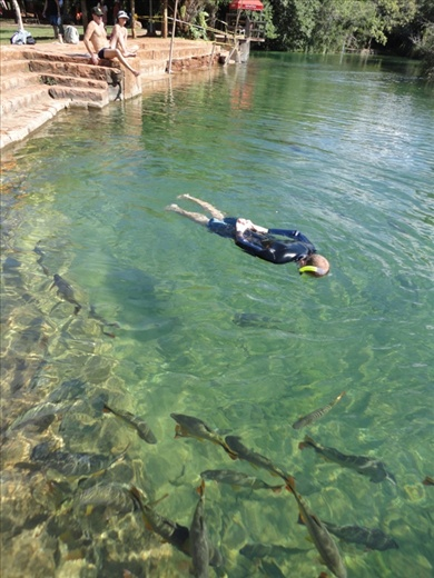 Getting in for a swim and snorkel with the fish at the municipal park at Bonito