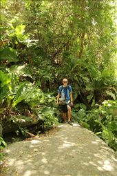 Path up to Pueblito in Tayrona National Park: by beckandphil, Views[430]