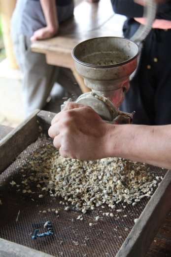 De-shelling the coffee beans