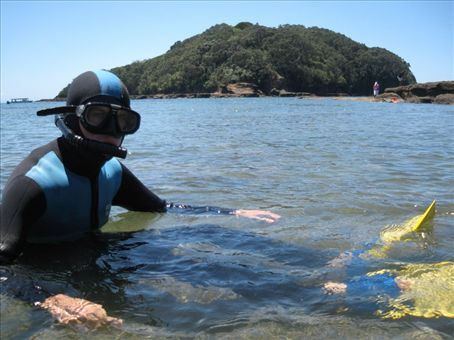 Snorkelling at Goat Island Reserve