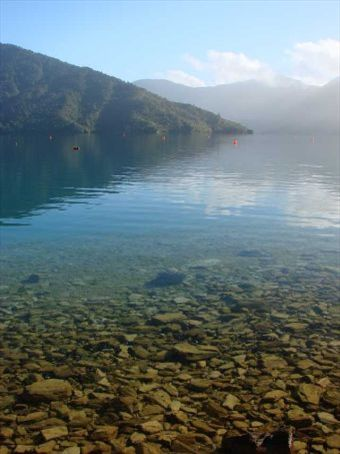 Marlborough Sounds just after sunrise