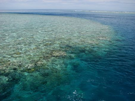 Outer Barrier Reef Trip from Port Douglas