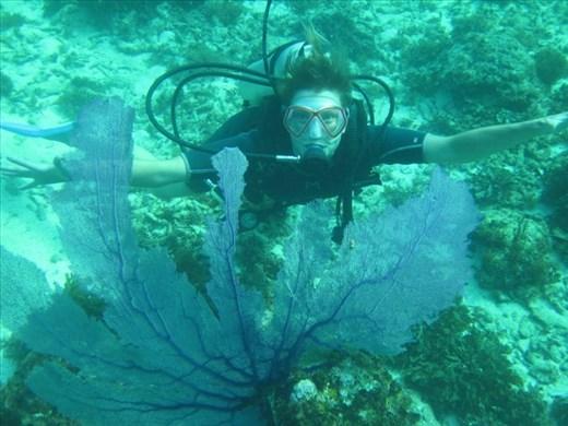 Scuba diving on Little Corn Island, Nicaragua
