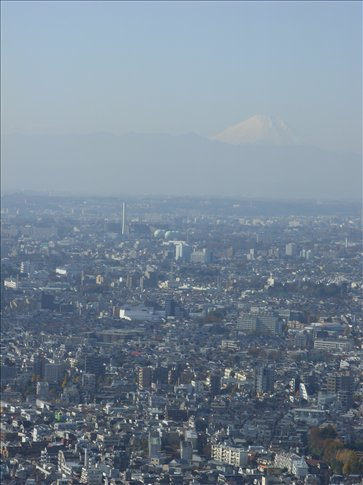 Day 4- View from Government Towers and Mount Fuji in Distance