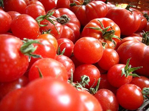 real tomatos