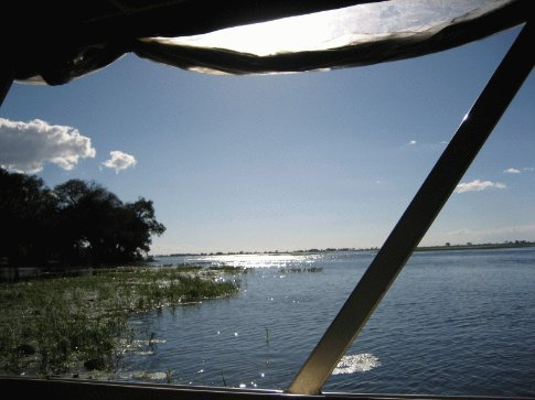 A view from our boat cruising the Chobe and Zambesi river