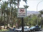 THIS IS OBVIOUSLY A PROBLEM AT AQABA BEACH!!: by bernadette_tony-travelling, Views[167]