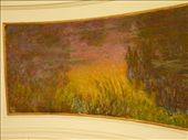 Monet's Waterlillies at the Museé de L'Orangerie.: by bettedarling, Views[122]