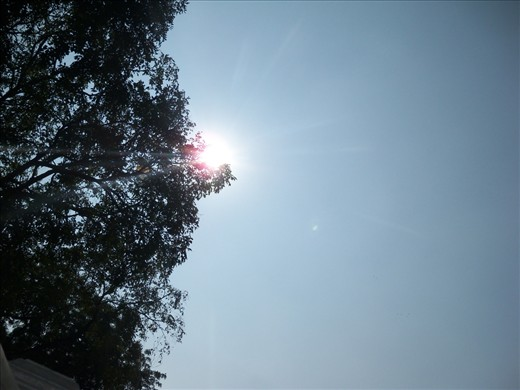 a simple art, blending the shade of tree and rays of sun, creating a layer a world apart with the sun in the middle, on the right hand sun is powerful he is giving heat- a scorching heat, while on the left hand side tree is giving shade and there sun is powerless.