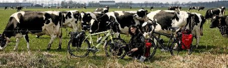 Ivana and our bikes in front of some curious cows..