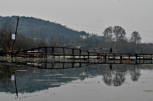 Bridge systems- are  major means of connectivity for the people on Dal Lake.