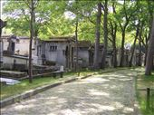 Paris -- Cimetiere du Pere Lachaise -- paved walkway: by billh, Views[127]
