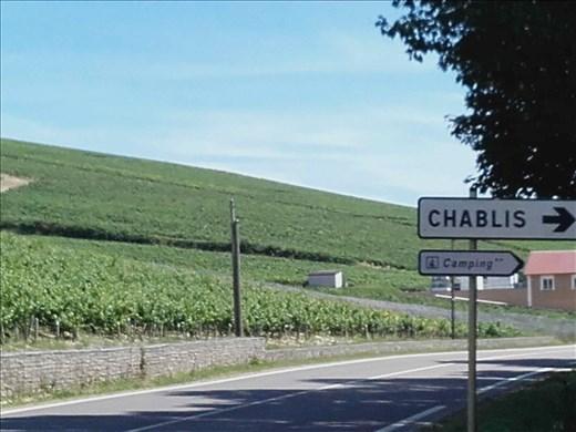Chablis vineyards.01
