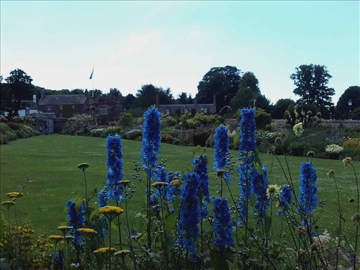 Direlton Castle -- formal gardens.01