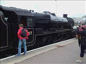 Scottish Highlands -- Ft William to Mallaig train.08: by billh, Views[227]