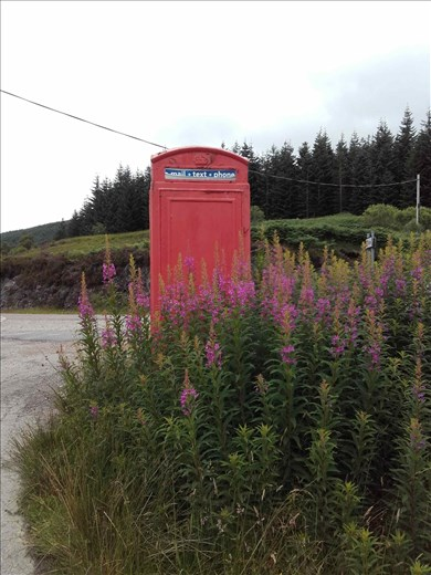Northwest rural Scotland -- abandoned metal phone booth.03