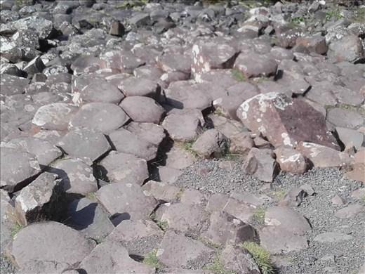 Northern Ireland -- Giant's Causeway -- hexagonal fracturing in lava flow.01