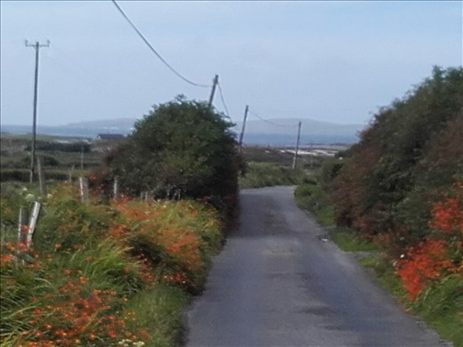 Ireland West Coast -- village lane