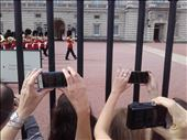 England -- London --  Changing of the Guard at Buckingham Palace.02: by billh, Views[156]