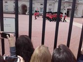 England -- London --  Changing of the Guard at Buckingham Palace.06: by billh, Views[239]