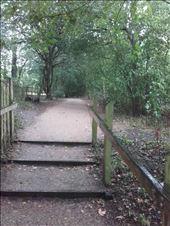 England -- Cottage Bridge -- walkway from village to parking: by billh, Views[127]