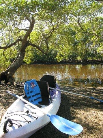Kayaking Through Paradise - Australia - WorldNomads com