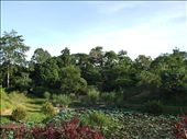 Labuk B&B gardens: by bob_and_caroline, Views[188]