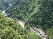 View from gondola down from Kuranda: by bob_and_caroline, Views[192]