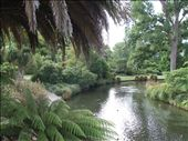 Christchurch river from Botanical Gardens: by bob_and_caroline, Views[143]