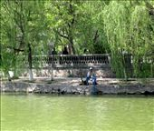 Yinchuan City Park: by bodiekern, Views[417]