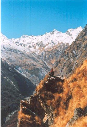 Scott in mountain paradise