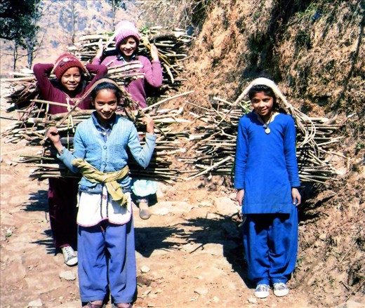 Some grade six girls(Chandani, Jyoti, Karishima & Kiran) out wood collecting before class. Unfortunately green wood cutting is now endemic due to the distances walked to collect wood for heating/cooking.