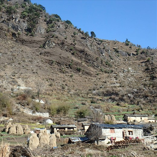 Jatoli is a small village (population approx 123 people) situated at an altitude of 2400m in the Kumaon Himalaya. The last village if one is trekking to Sunderdhunga. Also the site of peAk's fuel efficient stove project (chulhas). This is a snapshot of a section of the village.