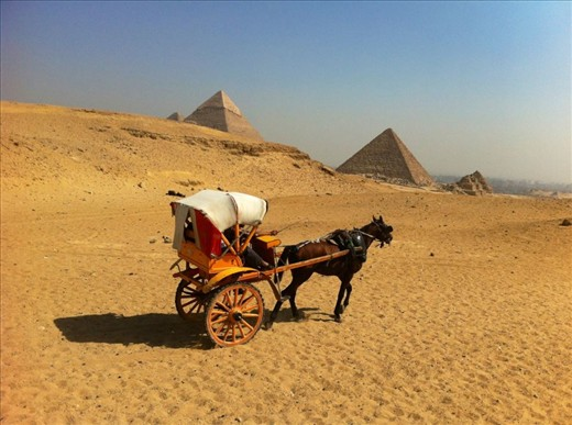 On a Camel in the Egyptian desert amazed at the historical Giza pryimids