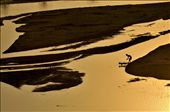 Silabati river is the attraction of youth sports activities during dusk: by bpatra, Views[374]