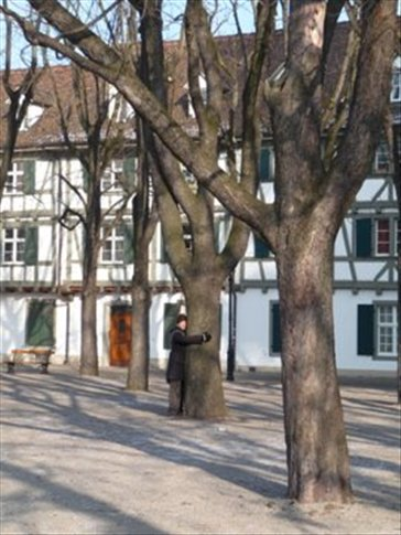 Brad trying to keep warm by hugging trees in Munsterplatz
