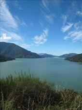 Onderweg van Nelson naar Picton.: by bramgies, Views[345]