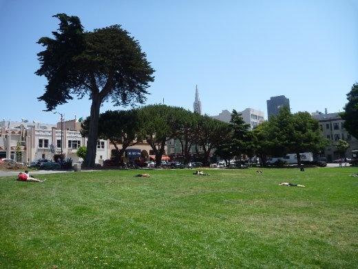 San Fran park scape