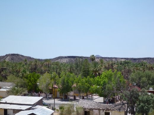 There are these random oasis towns scattered throughout the desert in Baja.