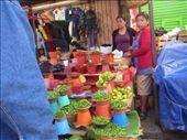 Market scene: by brettcooke, Views[151]