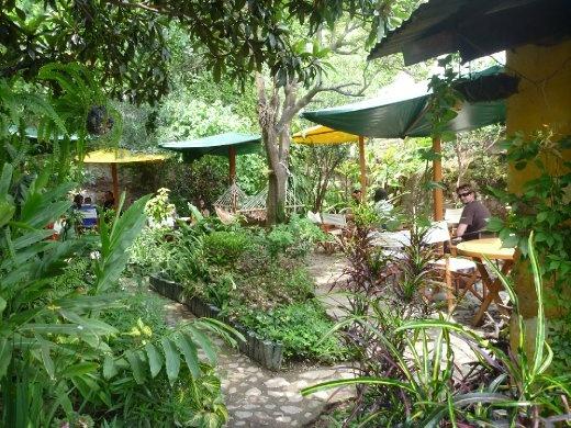 courtyard dining at Sabe Rico