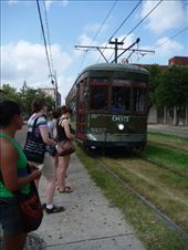 St Charles Streetcar. Cheap at $1.25.: by brettcooke, Views[185]