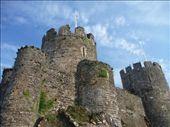 Conwy castle, Wales: by brettcooke, Views[926]