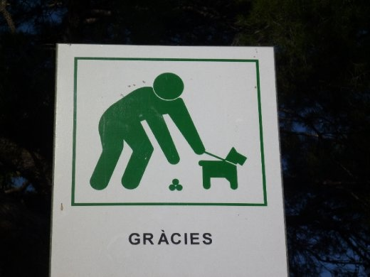Please put your hand in the ball shaped poo. Thank you.