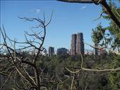 Mexico City skyline.: by brian, Views[223]