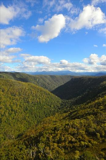 Scenery around Cradle Mountain