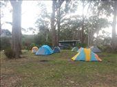Adventure Bay caravan park: by bundynbeaches, Views[186]